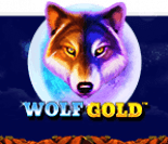 wolfgold_icon